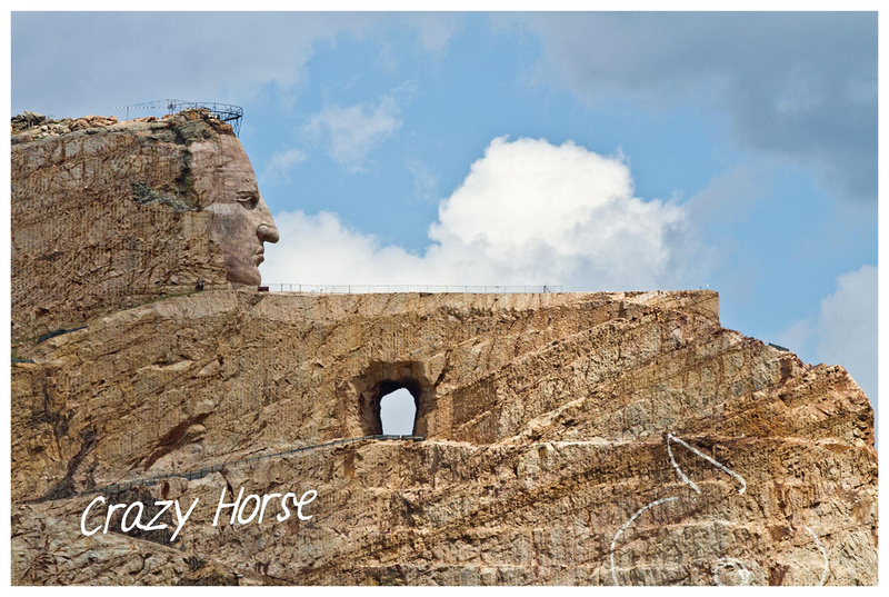 Crazy Horse by Laine Torres Photography