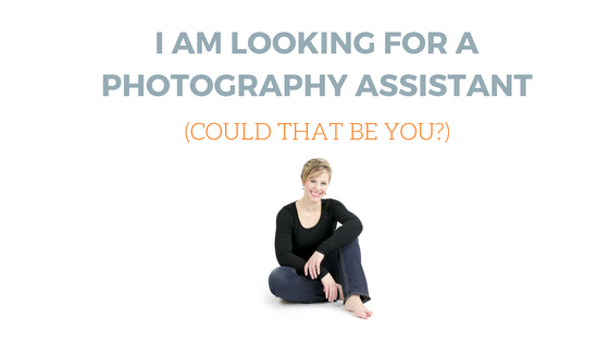 professional photographer in andover mn looking for photo session assistant